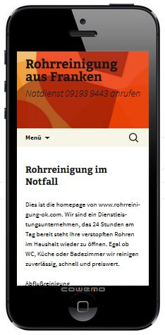 Darstellung Homepage in WP-Theme 2013